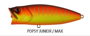 POPSY JUNIORMAX.jpg