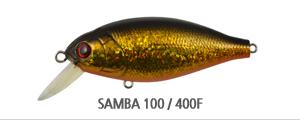SAMBA 100400F.jpg